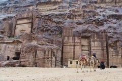 Dzieciaki jedzie wielbłądy i beduińskiego mężczyzna w Petra jarze Zdjęcia Royalty Free