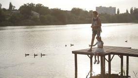 Dzieciaki karmi kaczki na molu zdjęcie wideo