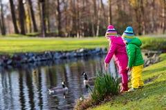 Dzieciaki karmi kaczki w jesień parku Fotografia Royalty Free