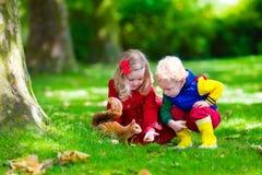 Dzieciaki karmi wiewiórki w jesień parku Zdjęcie Royalty Free
