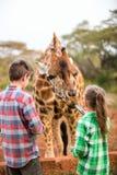 Dzieciaki karmi żyrafy w Afryka Zdjęcia Stock