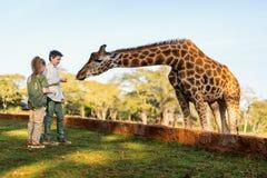 Dzieciaki karmi żyrafy w Afryka Obrazy Royalty Free