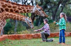 Dzieciaki karmi żyrafy w Afryka Obraz Royalty Free
