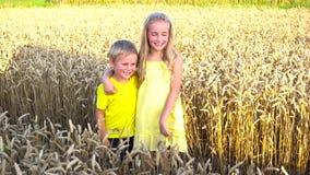 Dzieciaki pozuje w pszenicznym polu zbiory wideo