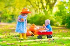 Dzieciaki przy dyniową łatą Obraz Stock