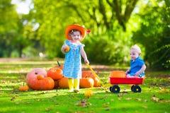 Dzieciaki przy Halloweenową dyniową łatą Zdjęcie Stock