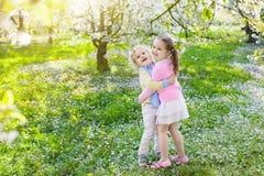 Dzieciaki z czereśniowego okwitnięcia kwiatem chłopcy tła Wielkanoc jajka miłych jaj trawy zielone świeżego ukryte hunt wyizolowa Obraz Royalty Free