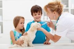 Dzieciaki z ich zwierzęciem domowym przy veterinary lekarką Zdjęcia Stock