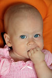 dziecka śliczny pięści dziewczyny target1769_0_ Zdjęcia Stock