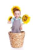 dziecka boyl słoneczniki fotografia royalty free