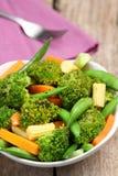 dziecka brokułów marchwiany kukurydzany grochowy sałatki kłapnięcie Fotografia Stock
