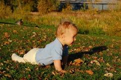 dziecka czołganie Obraz Stock
