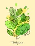 Dziecka Kale ilustracji