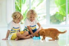 Dziecka karmienia domu kot Dzieciaki i zwierzęta domowe zdjęcia royalty free