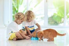 Dziecka karmienia domu kot Dzieciaki i zwierz?ta domowe zdjęcia stock