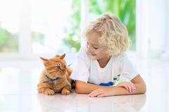 Dziecka karmienia domu kot Dzieciaki i zwierz?ta domowe obrazy stock