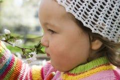 dziecka kwiecenie obwąchuje drzewa Zdjęcie Stock
