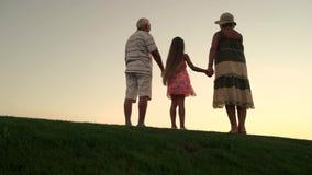 Dziecka mienia ręki z dziadkami, tylny widok zbiory