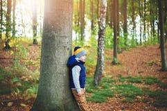 Dziecka przytulony drzewo w lesie obraz stock