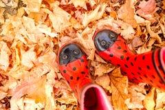 Dziecka ` s gumboots w grochach przeciw tłu żółty jesieni ulistnienie fotografia stock