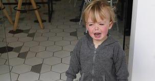 Dziecka ` s histeria w kawiarni zbiory wideo