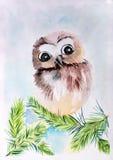Dziecka ` s ` rysunkowa sowa na gałęziasty ` Obrazy Stock