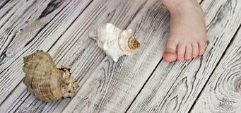Dziecka ` s stopa i seashells, biały drewniany tło obraz royalty free