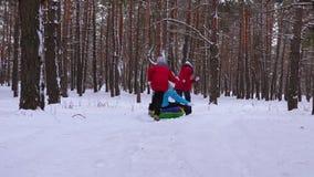 Dziecka sania mama na śnieżnej drodze w sosna śmiechu i parku Szczęśliwy rodzinny bawić się w zim iglastych lasowych bożych narod zbiory