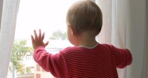 Dziecka wzruszający okno w domu zbiory wideo