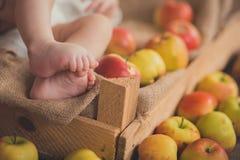 Dziecka dziecka zakończenia ostrość na nowonarodzonych małych malutkich ciekach i palcach w drewnianym pudełku z świeżymi lat jab Fotografia Stock