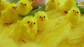 Dziecko żółta wielkanoc bawi się kurczątka i jajka na tle piórka Świąteczny wideo kartka z pozdrowieniami zbiory