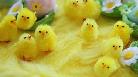Dziecko żółta wielkanoc bawi się kurczątka i jajka na tle piórka Świąteczny wideo kartka z pozdrowieniami zdjęcie wideo