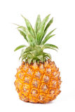 Dziecko ananas Zdjęcia Stock