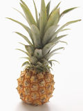 dziecko ananas obraz royalty free