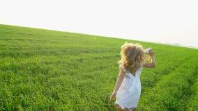 Dziecko bawić się z papierowym samolotem Ona śmia się i smilling Mała śliczna szczęśliwa dziewczyna w polu z papierem zbiory wideo