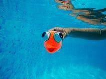 Dziecko bawić się z rodzajową gumy ryba zabawką w pływackim basenie Fotografia Royalty Free