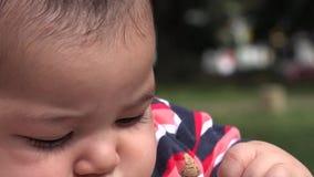 Dziecko Bawić się z zabawką, niemowlak, Nowonarodzony zdjęcie wideo