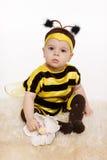 Dziecko bencla pszczoły kostiumowy obsiadanie na floo Obrazy Royalty Free