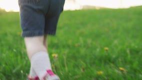 Dziecko biega na zielonej trawie w letnim dniu zbiory wideo