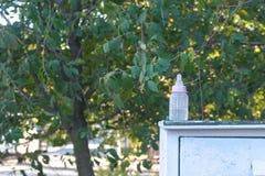 Dziecko butelka z pacyfikatorem w parku Uprowadzać pojęcie zdjęcia stock