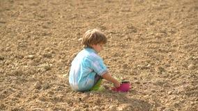 Dziecko chłopiec bierze warzywa na słonecznym dniu w ogródzie Berbecia wiek ogrodnictwo ogrodnicze narz?dzia wiosny uprawia? ziem zbiory wideo
