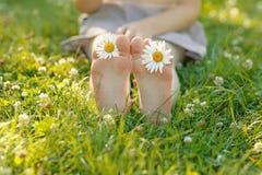 Dziecko cieki z stokrotką kwitną na zielonej trawie Obrazy Stock