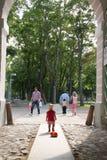 Dziecko cofa się w odległość z zabawką Fotografia Stock