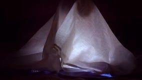 Dziecko czyta książkę pod koc z latarką przy nocą zdjęcie wideo