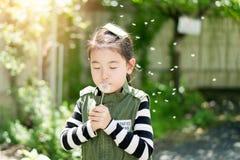 Dziecko dmucha dandelion w parku zdjęcia royalty free