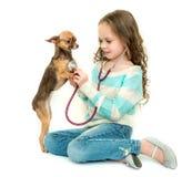 Dziecko dziewczyna bawić się weterynarza z jej małym psem zdjęcia royalty free