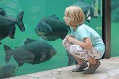 Dziecko dziewczyna ogląda denne ryba w dużym akwarium Zdjęcie Royalty Free