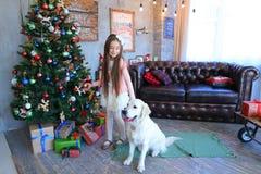 Dziecko dziewczyna stoi blisko psiego i ono uśmiecha się w studiu na bożych narodzeniach Zdjęcia Royalty Free