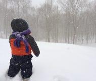 dziecko gra śnieg Obraz Royalty Free