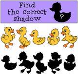 Dziecko gry: Znajduje poprawnego cień Mali śliczni kaczątka Obraz Stock